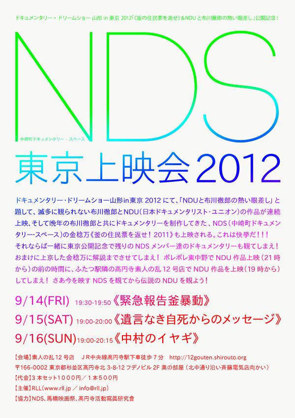 NDSfiyer1